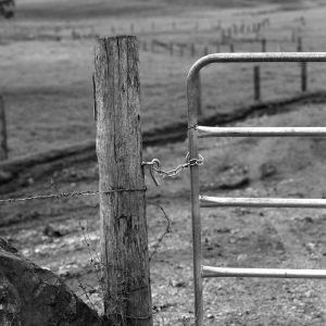 _MG_7577 gate post b&w